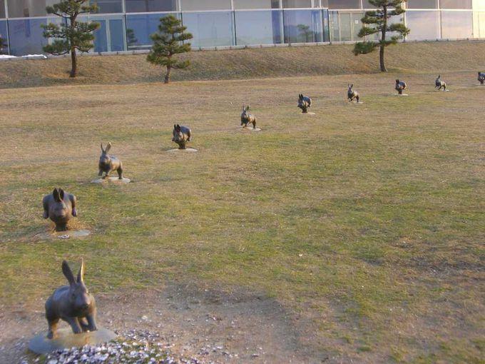 パワースポットだとの評判もある、島根県立美術館の宍道湖うさぎ