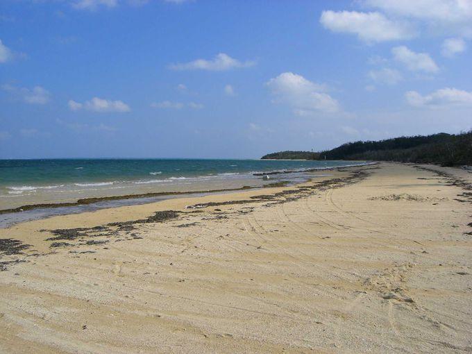 美しい白浜のビーチ、トゥマールビーチ。