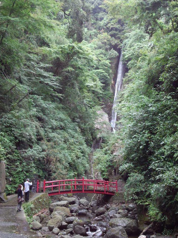 見事な美しい滝