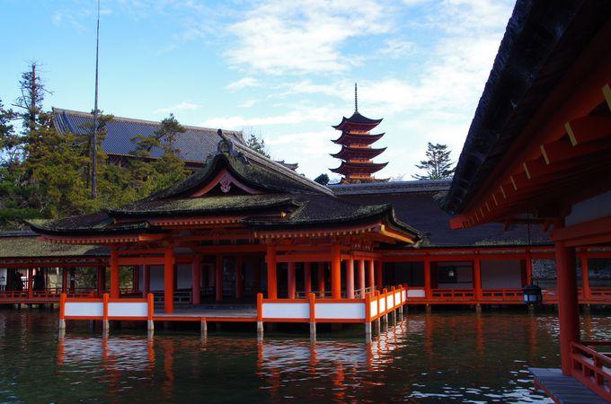 厳島神社から五重塔を撮る。