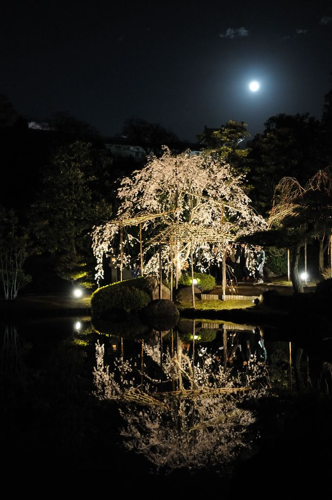 黒田官兵衛ゆかりの茶釜も!癒しの日本庭園「好古園」