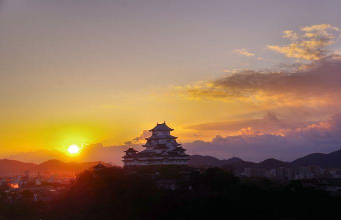 その4・登る朝日と姫路城の共演