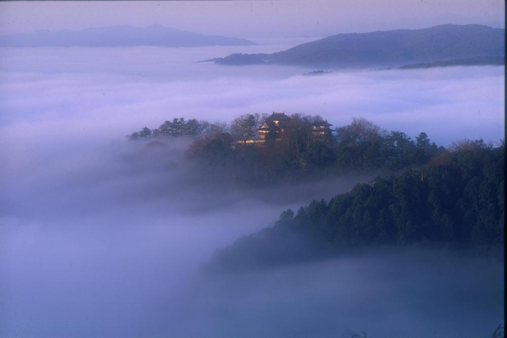 メディアでも話題!雲海に浮かぶ天空の山城「備中松山城」