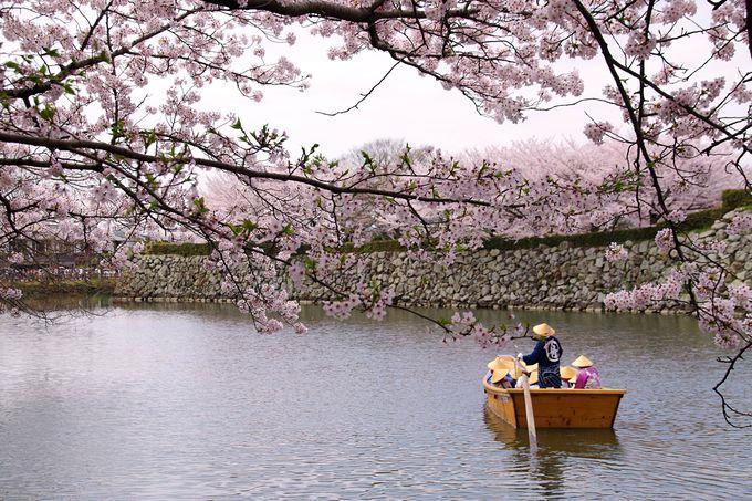 期間限定のお楽しみ「姫路藩和船」