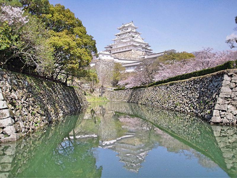 姫路城と桜を見るならココ!無料のおすすめスポット10選
