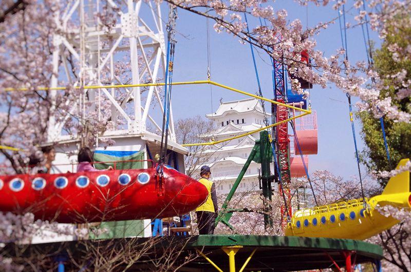 姫路城と桜を見るならココ!撮影おすすめスポット10選