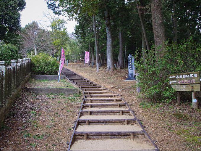 国男少年ゆかりの鈴ノ森神社から辻川山展望台へ