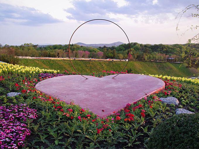 「ネスタフローラ」のメーンエリア「ハートの池」、眼前に広がる棚田風の花畑