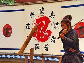 忍びの国「伊賀」へ真の忍者に会いに行こう!伊賀流忍者博物館|三重県|トラベルjp<たびねす>