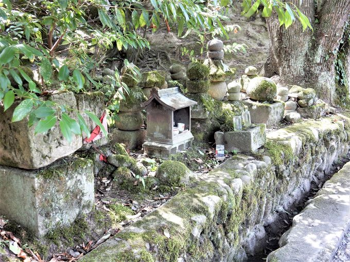 其の弐.信長・秀吉・家康時代の伊賀上野城跡