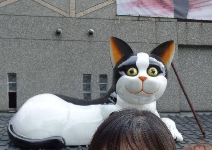 まずは猫がお出迎え