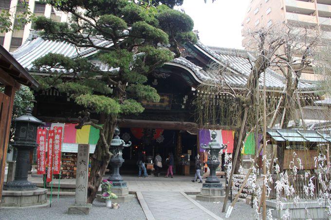 京都の真ん中、六角堂で縁結び!
