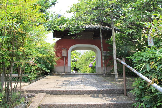 若冲晩年の隠棲の地「石峰寺」