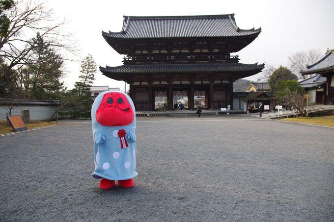 3つ目の世界遺産は最高位の門跡寺院「仁和寺」‥‥んっ?きぬか怪さん!