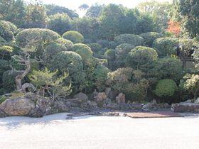 南禅寺塔頭「金地院」で大人の京都を楽しむ|京都府|トラベルjp<たびねす>