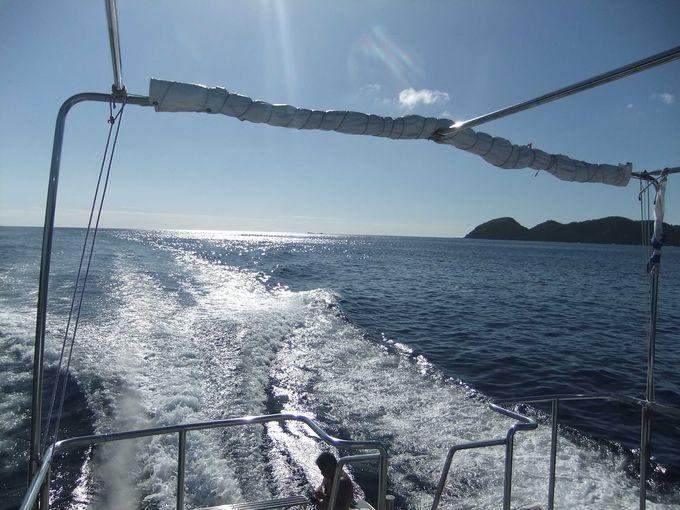 ボニンブルーの海でのクルーズも堪能しましょう!