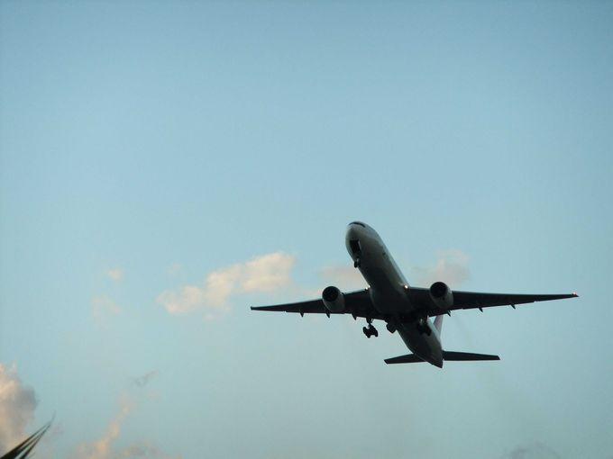 何機の飛行機を見たことでしょうか・・・