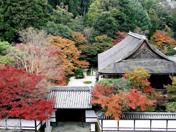 庭園が素敵な天授庵の楼上からの眺望