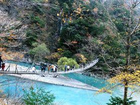 世界のベスト10にランクインした日本屈指の吊り橋とは!?|静岡県|トラベルjp<たびねす>