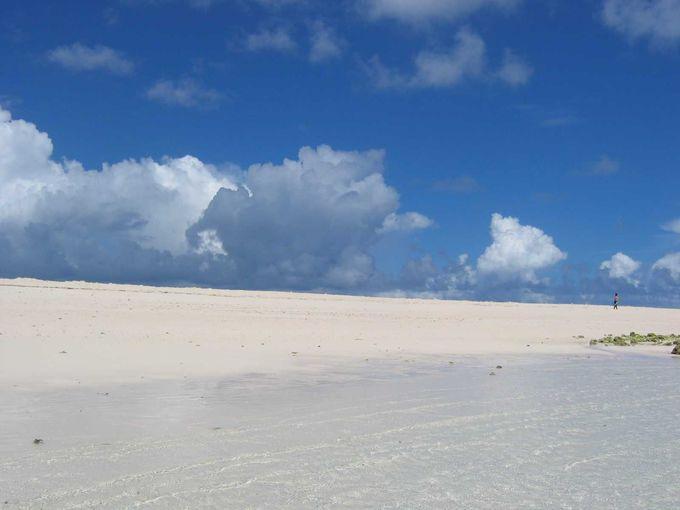 360度見渡す限り真っ白な景色に感動!