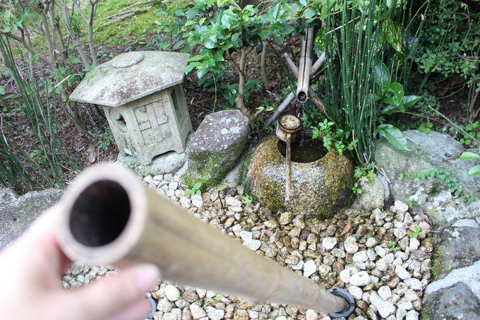 全国唯一!2つの水琴窟が合体した日本庭園