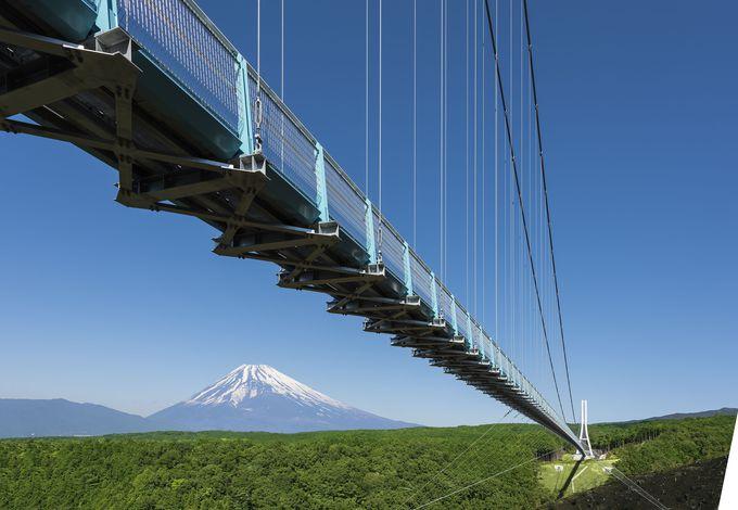 吊橋としては日本最長!富士山の絶景も見ながら渡る「三島スカイウォーク」(静岡)