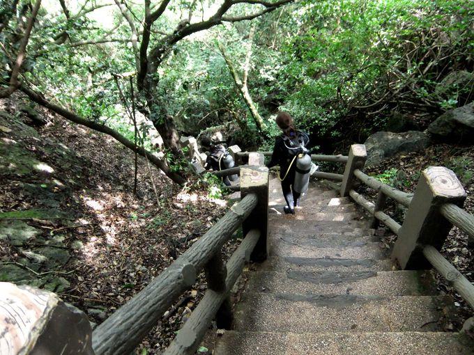絶景への道のりは階段116段の制覇が必要!