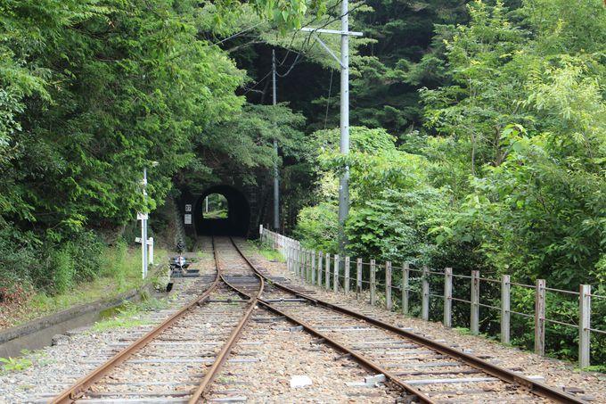 接岨峡温泉駅周辺の宮沢橋は日本一の長さの階段吊橋!