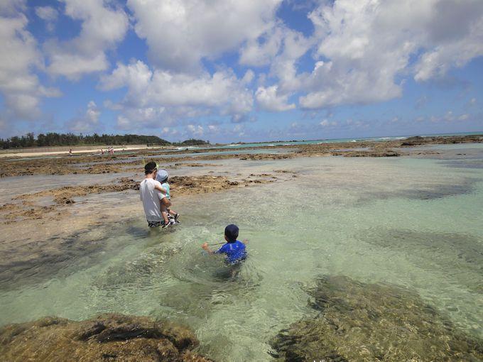小さい子供連れファミリーには、干潮時がおススメ!至るところに透明度の高い天然のプールができます!