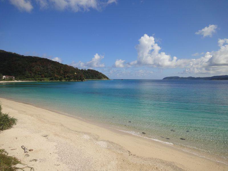 サンゴ礁の青い海に癒される!奄美大島で海三昧&贅沢な休日!