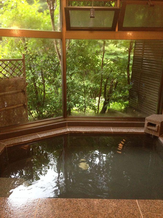 森林浴気分の温泉を何度も堪能!