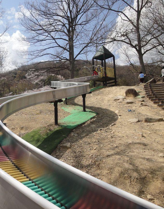 山の斜面を利用したアスレチック遊具やローラー滑り台に子供達が大喜び!