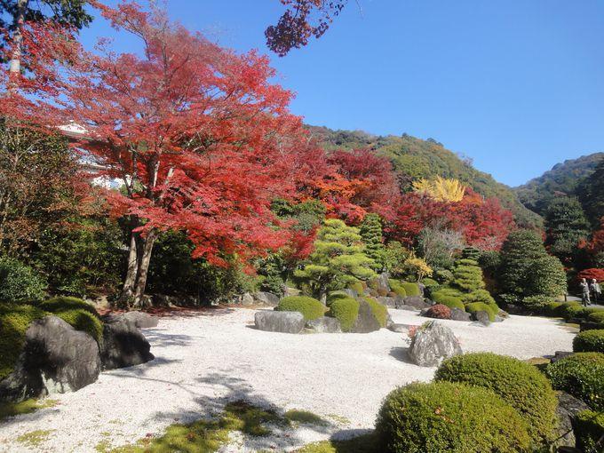 石庭と池泉回遊式庭園が見事!