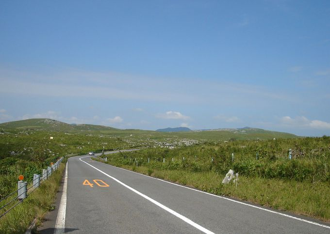 カルスト台地を抜ける「秋吉台道路」