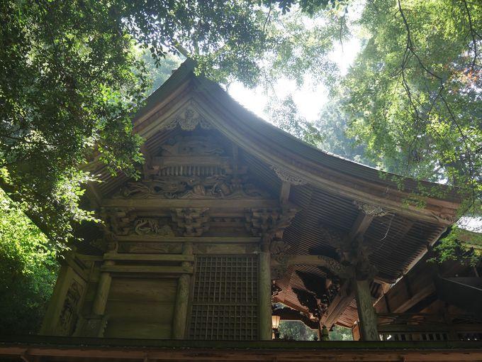 龍の彫刻が見事な槵觸神社本殿