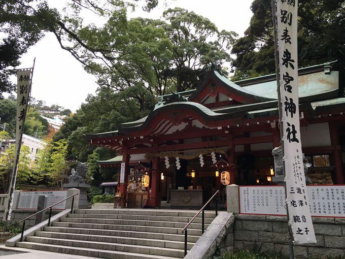神が宿る大楠を崇める古来のパワースポット「來宮神社」