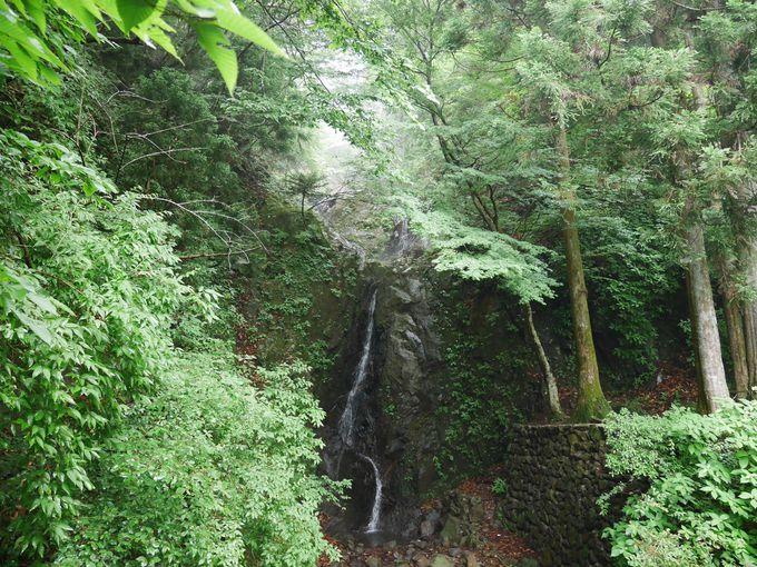 「二重滝」と「呪いの杉」「縁切り杉」