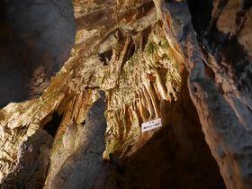 鍾乳石が美しい飛騨大鍾乳洞・高山は太古の昔海だった!?|岐阜県|トラベルjp<たびねす>