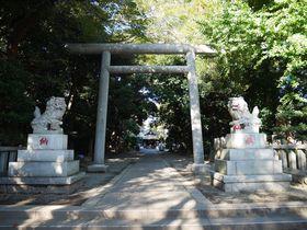 就職にもご利益!学問の神様を祀る神奈川県平塚市の前鳥神社|神奈川県|トラベルjp<たびねす>
