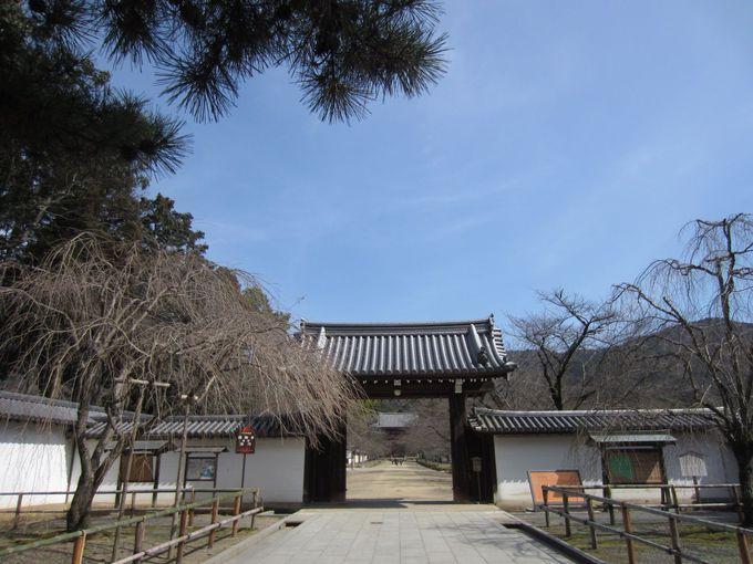 醍醐寺へのアクセス