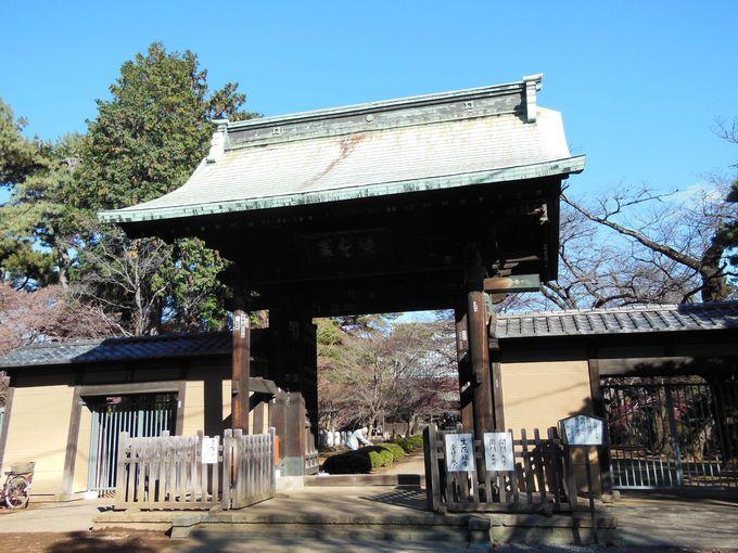 豪徳寺の概要とアクセス