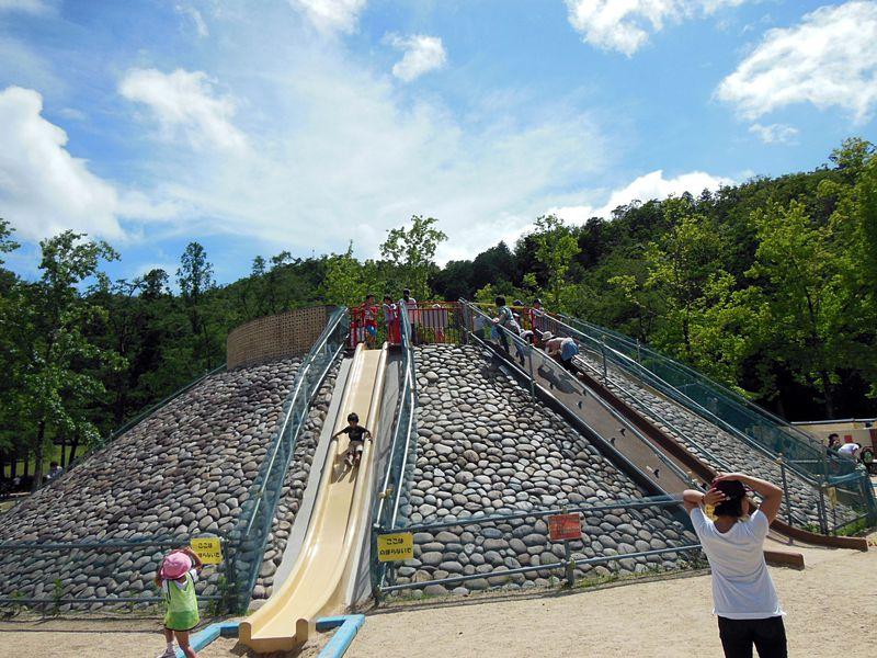 京都宝ヶ池公園は無料で遊び放題!こどもの楽園に親も笑顔!