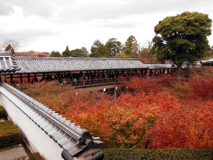東福寺の穴場的な紅葉スポットは方丈庭園