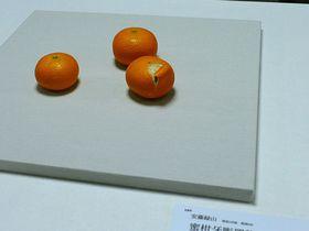 京都国立近代美術館で明治150年展!驚愕の超絶技巧も必見