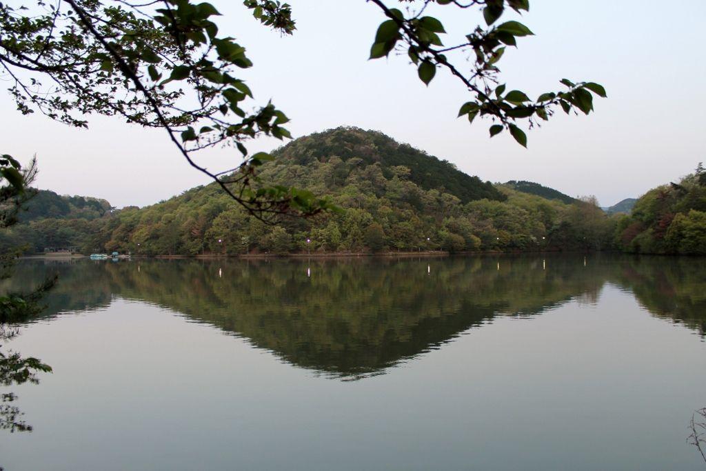 京都の穴場 宝が池公園