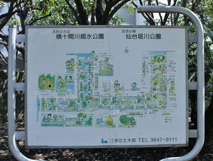 「区民の森」をテーマにした延長3.7キロの都内最大級の親水公園