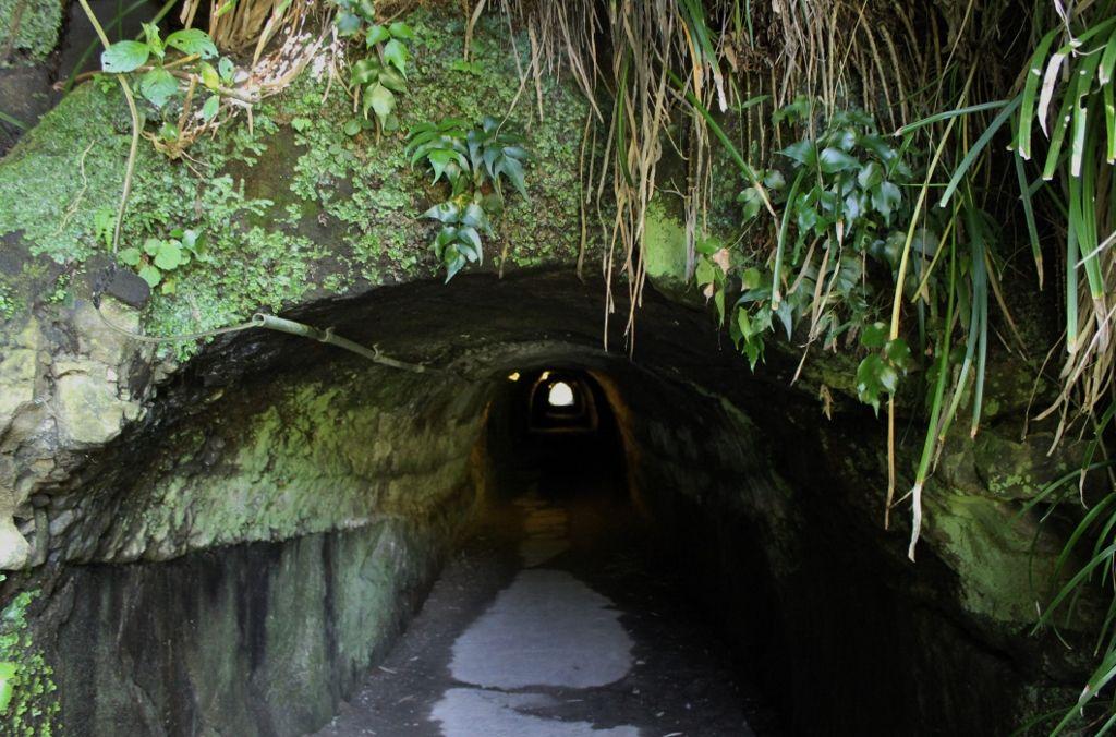 ぜひ体感したい闇の世界! 『素掘トンネル』