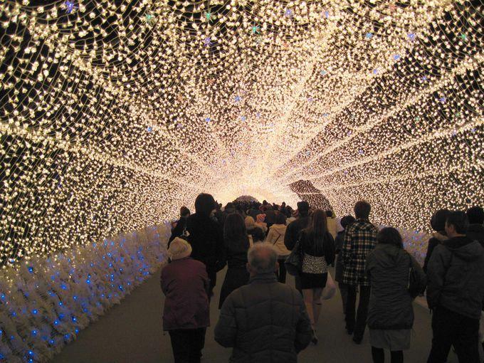 120万球の光のトンネル