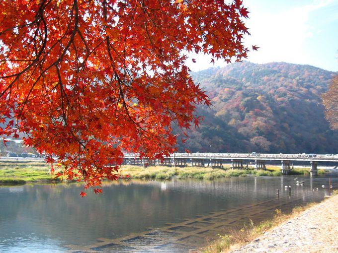一番おすすめの季節は秋!