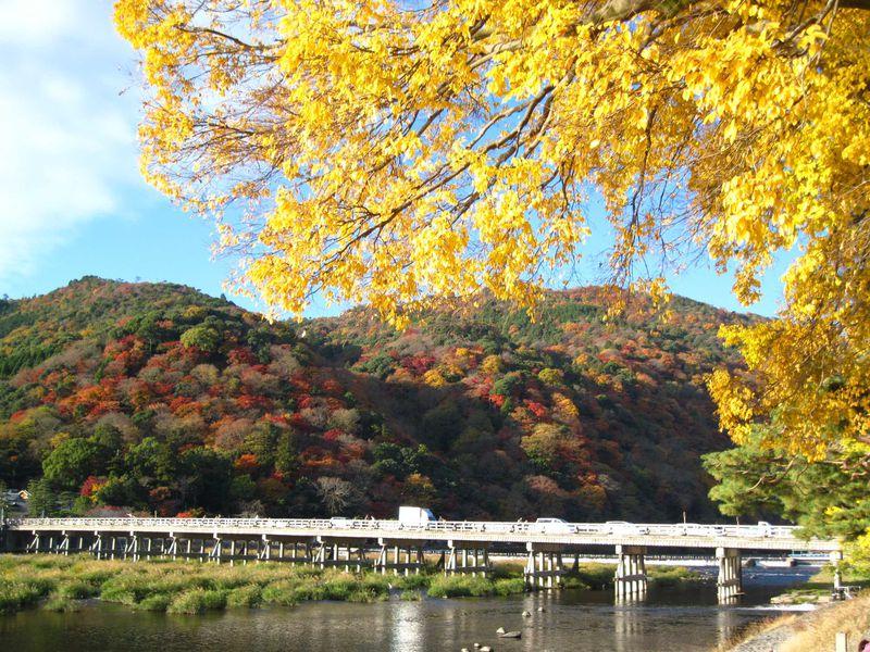 これぞ、ニッポンの紅葉!京都・嵐山